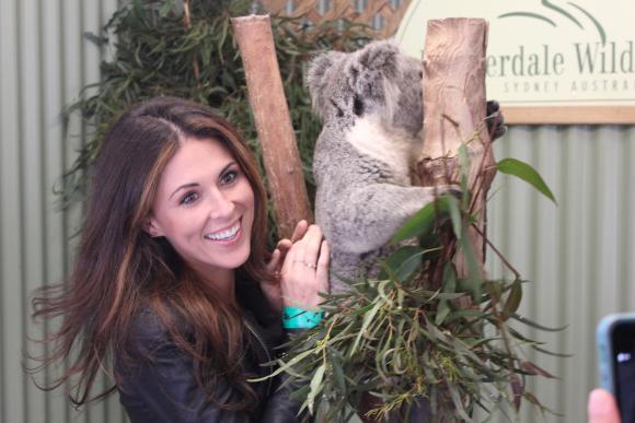 Koalas & Kangaroos In Sydney, Australia (LIFE COMPLETE)